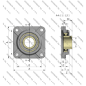 UCF 206 CRAFT